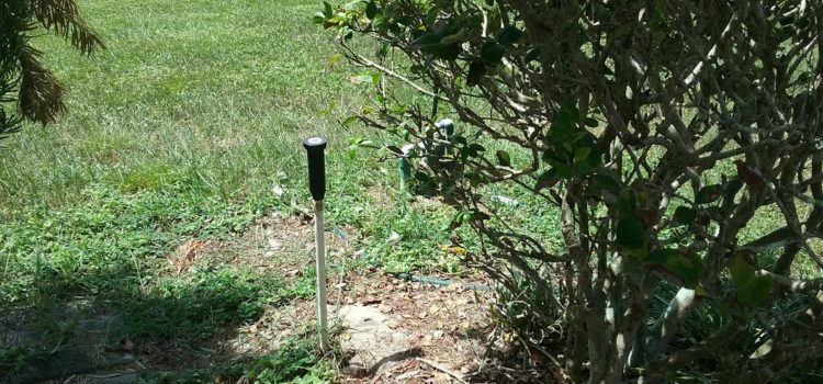 Best Lawn Sprinkler System Repair Business Tampa Florida